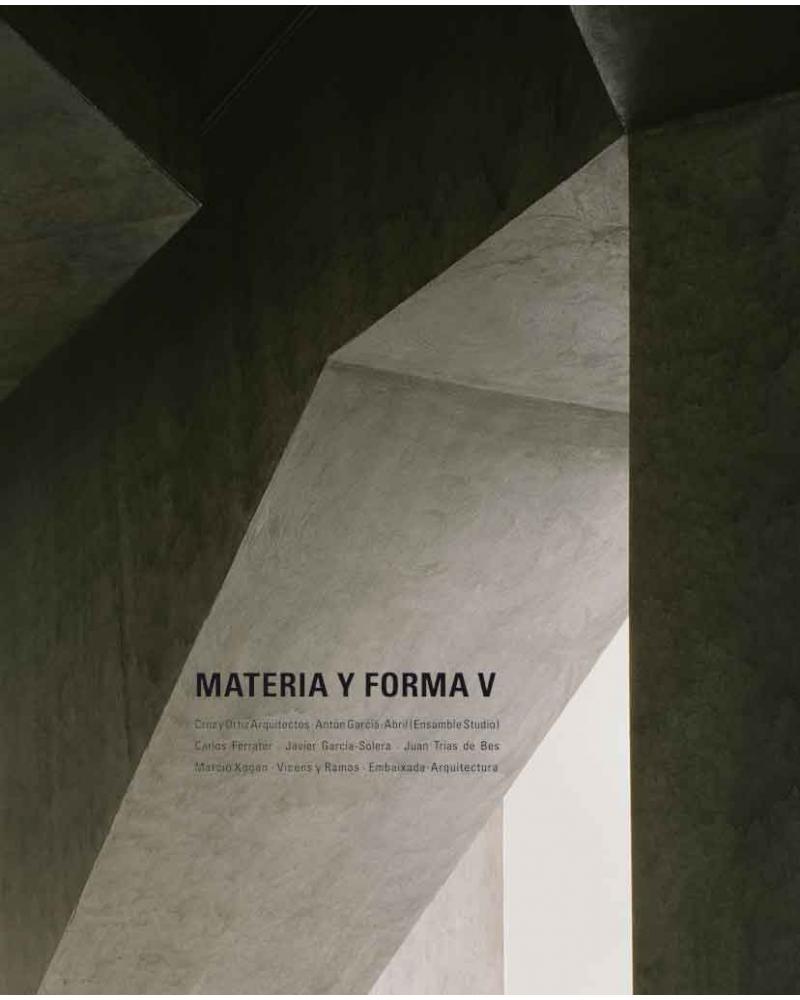 Materia y Forma V