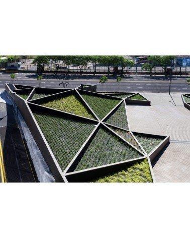 Plaza Catalinas Adamo Faiden