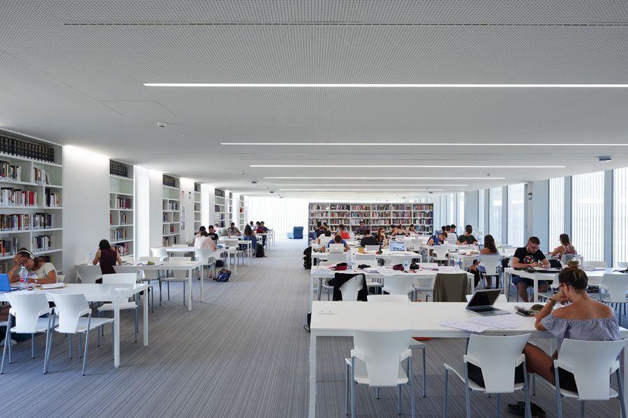 Biblioteca de edificio de Servicios Generales. Universidad San Jorge (IDOM)